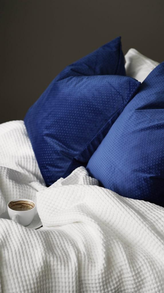 Blauwe kussens en witte deken