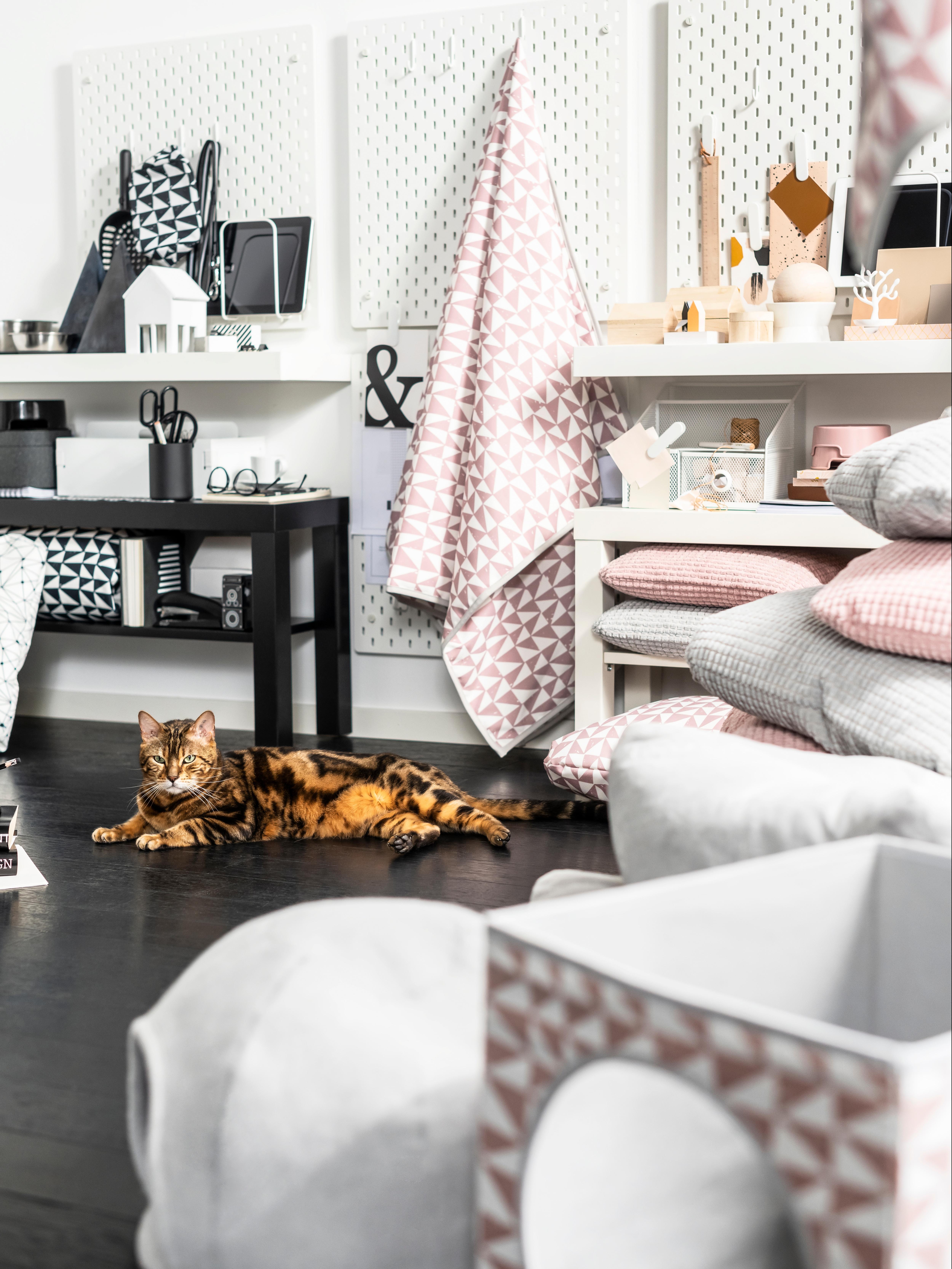 Smeđa mačka ispod LURVIG roze deke s uzorkom okružena jastucima ispred SKÅDIS rupičaste ploče i LACK stola.