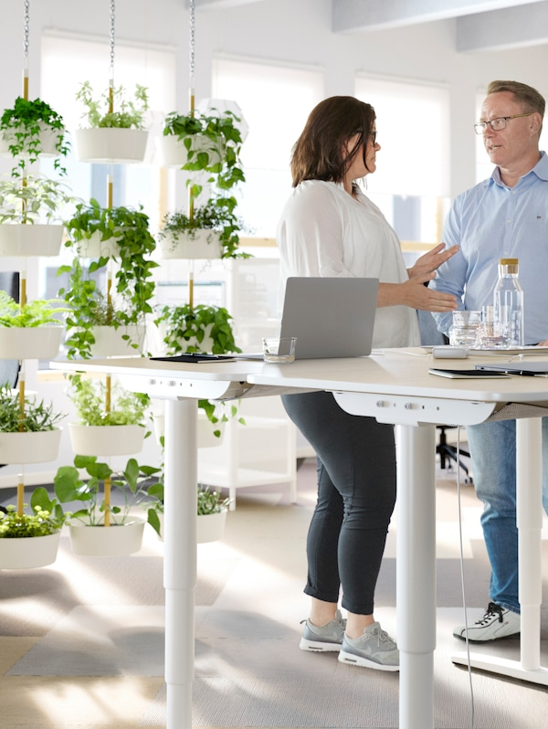 A man and a woman talking to each other in a work space, white desks, and lots of hanging plants in plant pots behind.