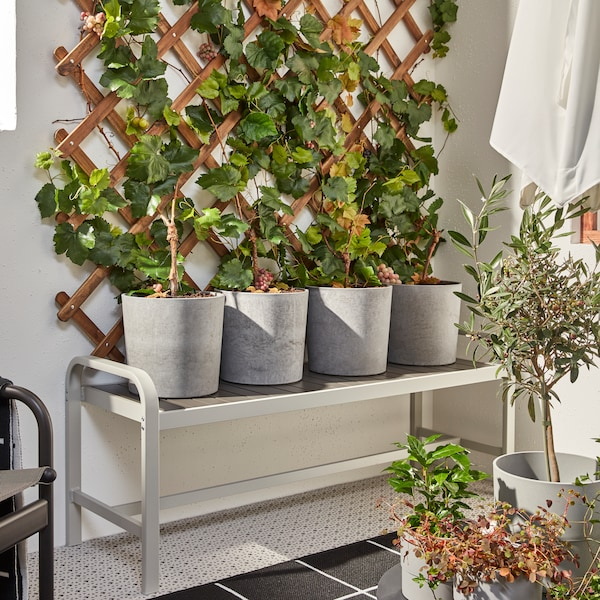 Banco SJÄLLAND en tonos grises con cuatro maceteros grises con plantas frondosas que se extienden por un enrejado de madera justo detrás.