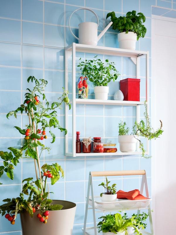 Vitt ENHET kök med TILLREDA portabel induktionshäll samt mikrovågsugn i ett rum med vitt kakel och trägolv.