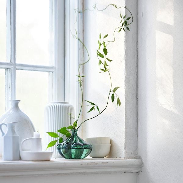 Un vase en verre vert est posé sur le rebord d'une fenêtre à côté de vases blancs et des vrilles vertes en sortent.