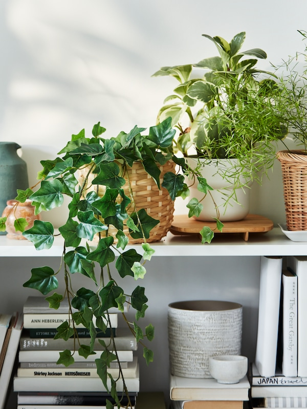 A section of a white BILLY bookcase filled with a mix of books and FEJKA artificial plants in various plant pots.