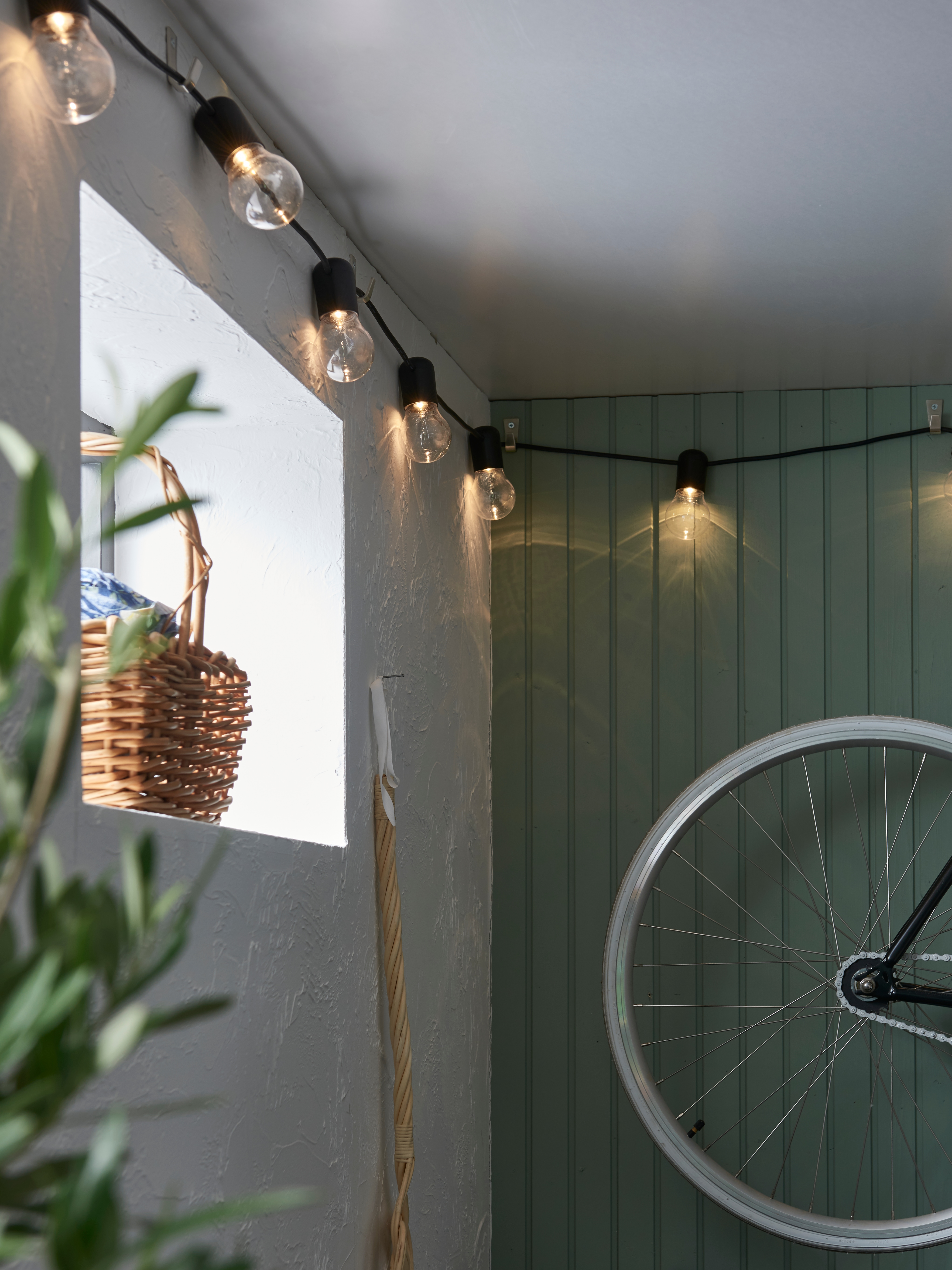 Interior with LED lighting chain with 12 lights, bicycle mounted to the wall, basket and potted plant.
