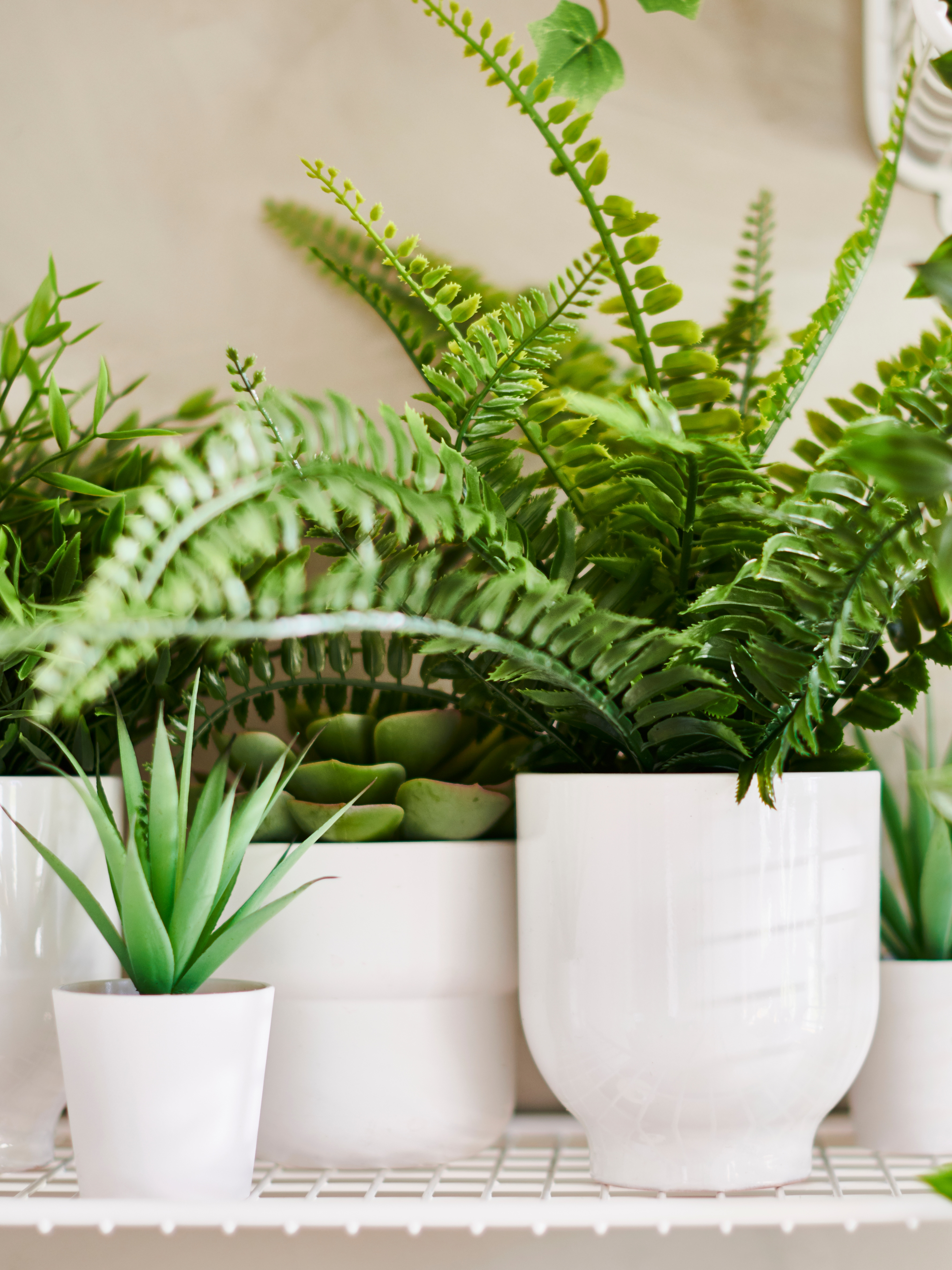 Different types of FEJKA artificial plants including ferns, succulents and hanging, clustered together on a white shelf.