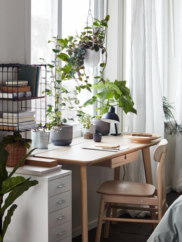 Egy ablak előtt álló kőris LISABO íróasztalt és egy nyír RÖNNINGE széket látunk. Az ablakpárkányon növények vannak, mellette pedig egy fehér HELMER fiókos elem.