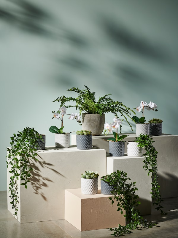 Artificial potted plants against a soft green background