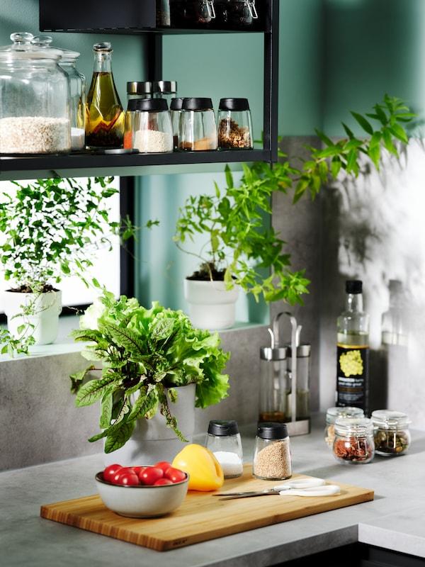 Ecke einer Küche, in der frische Kräuter in Übertöpfen, Gewürze in IKEA 365+ Dosen und andere Salatutensilien zu sehen sind.