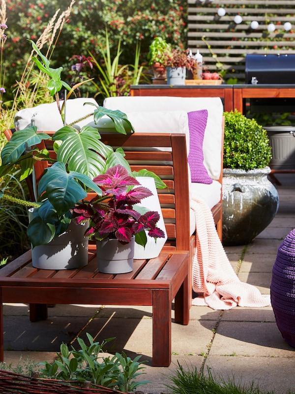 طاولةبطلاءبني مع نباتاتفي أواني نباتاتبلون رماديبجواركنبة للأماكنالخارجيةعليهاوسائد وبطانية.