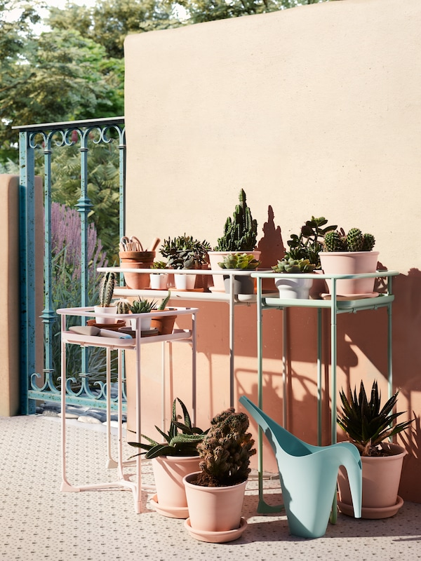 Trei suporturi de plante albe, roz și albastru deschis, toate cu ghivece de cactuși și plante suculente de diferite dimensiuni.