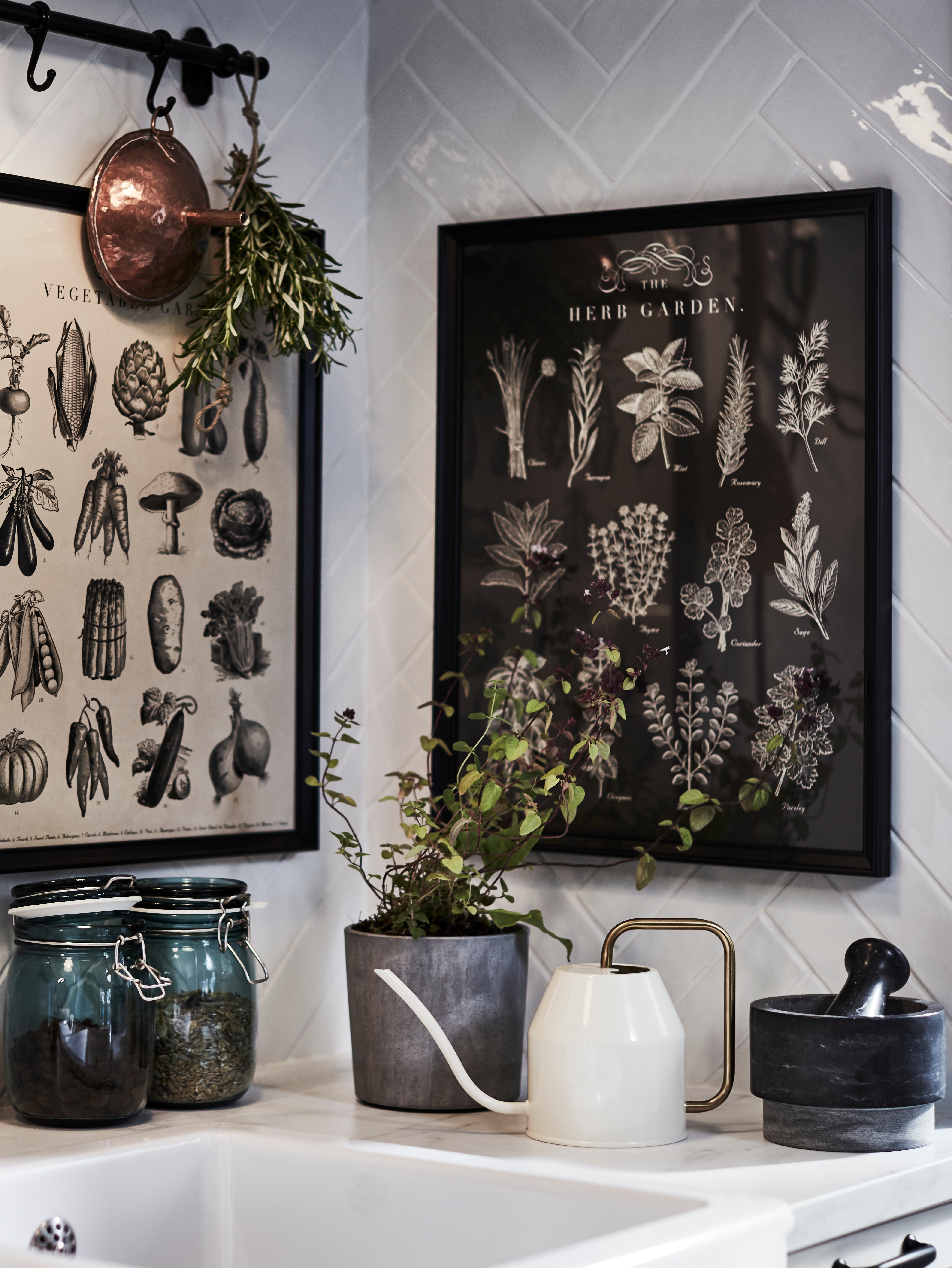 A kitchen sink has garden-themed KNOPPÄNG frames with posters on the walls above by a potted herb and a watering can.
