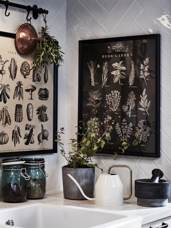 Umyvadlo v rohu kuchyně obklopené rámy obrazů s bylinnými motivy, bylinkami a mosaznou / bílou konví.
