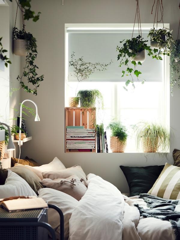 Un lit couvert d'oreillers et entouré de plantes, une fenêtre avec des livres, des magazines, des plantes et un store à enrouleur occultant.