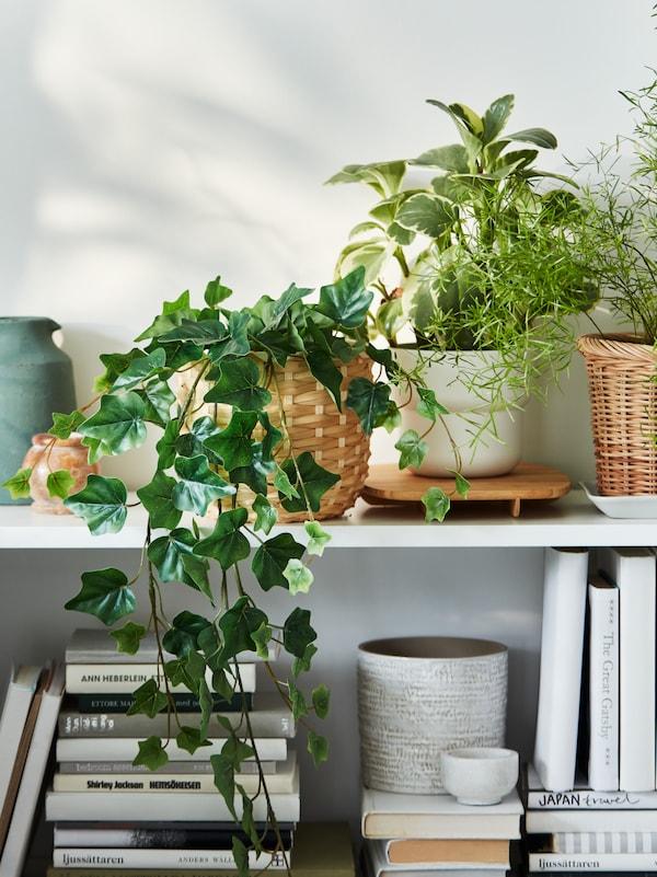 قسم من مكتبة BILLY البيضاء مليء بمزيج من الكتب ونباتات FEJKA الاصطناعية في أواني نباتات مختلفة.