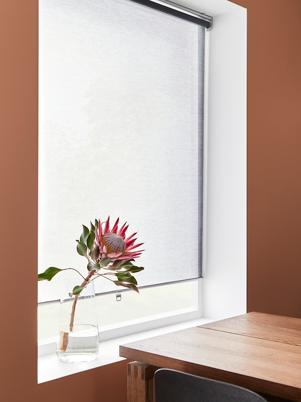 A dark pink dining room with a grey roller blind, a plant in the window sill and a table in brown stained oak veneer.