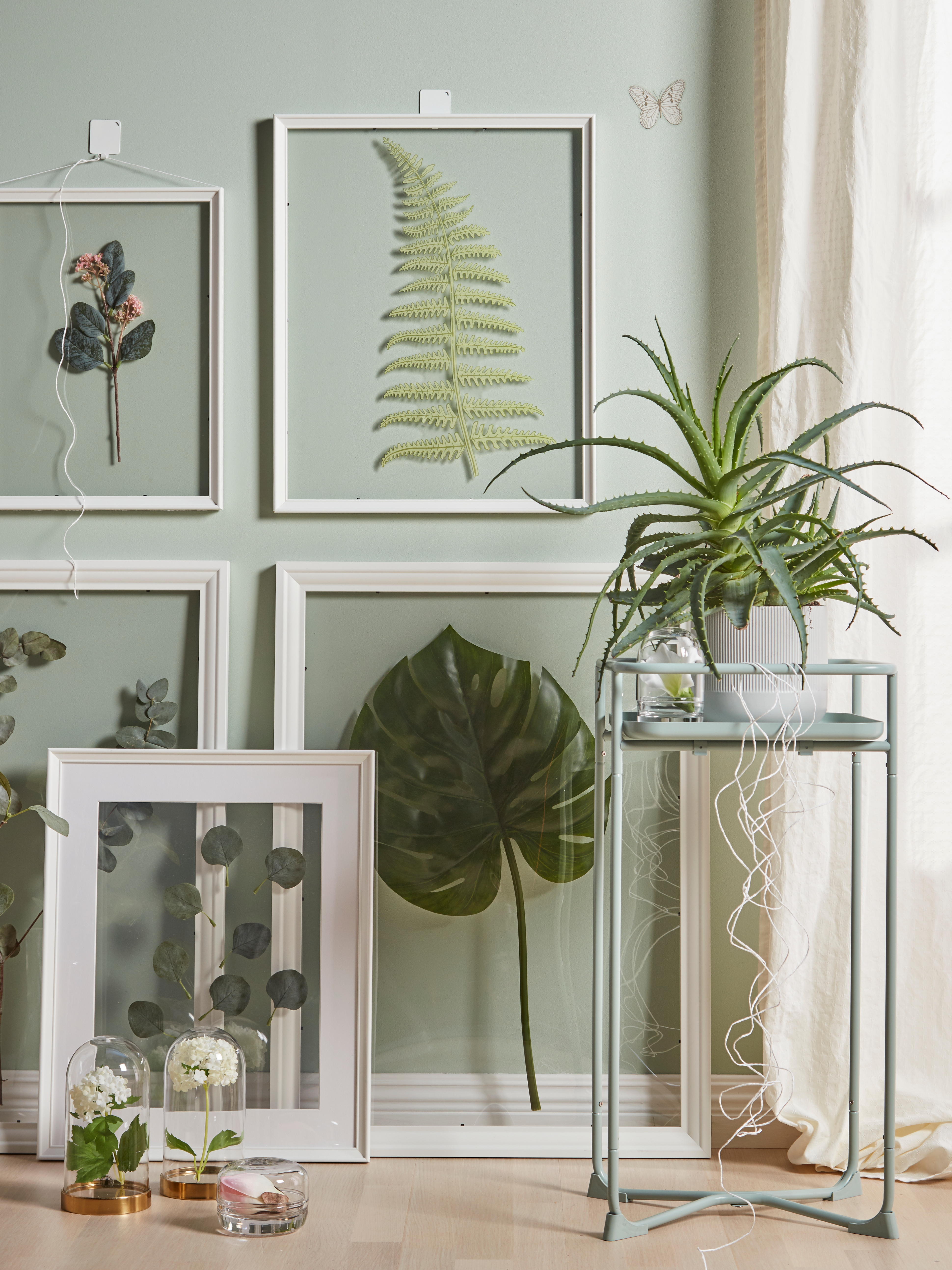 EDSBRUK frames with green plants behind a plant stand and glass domes containing flowers.