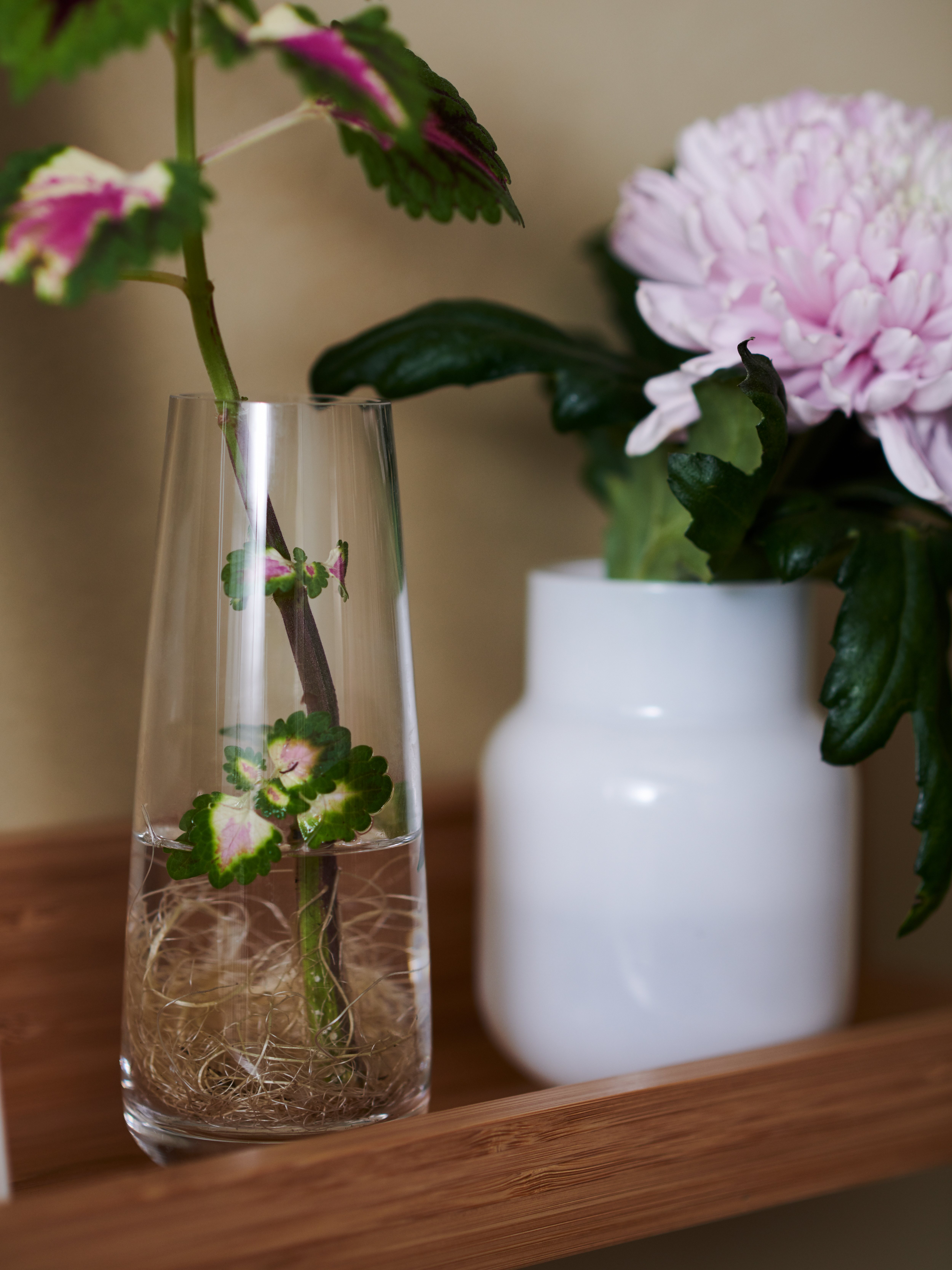 Close-up of wooden shelf with a transparent BERÄKNA vase and a white FÖRENLIG vase, both of which have flowers in them.