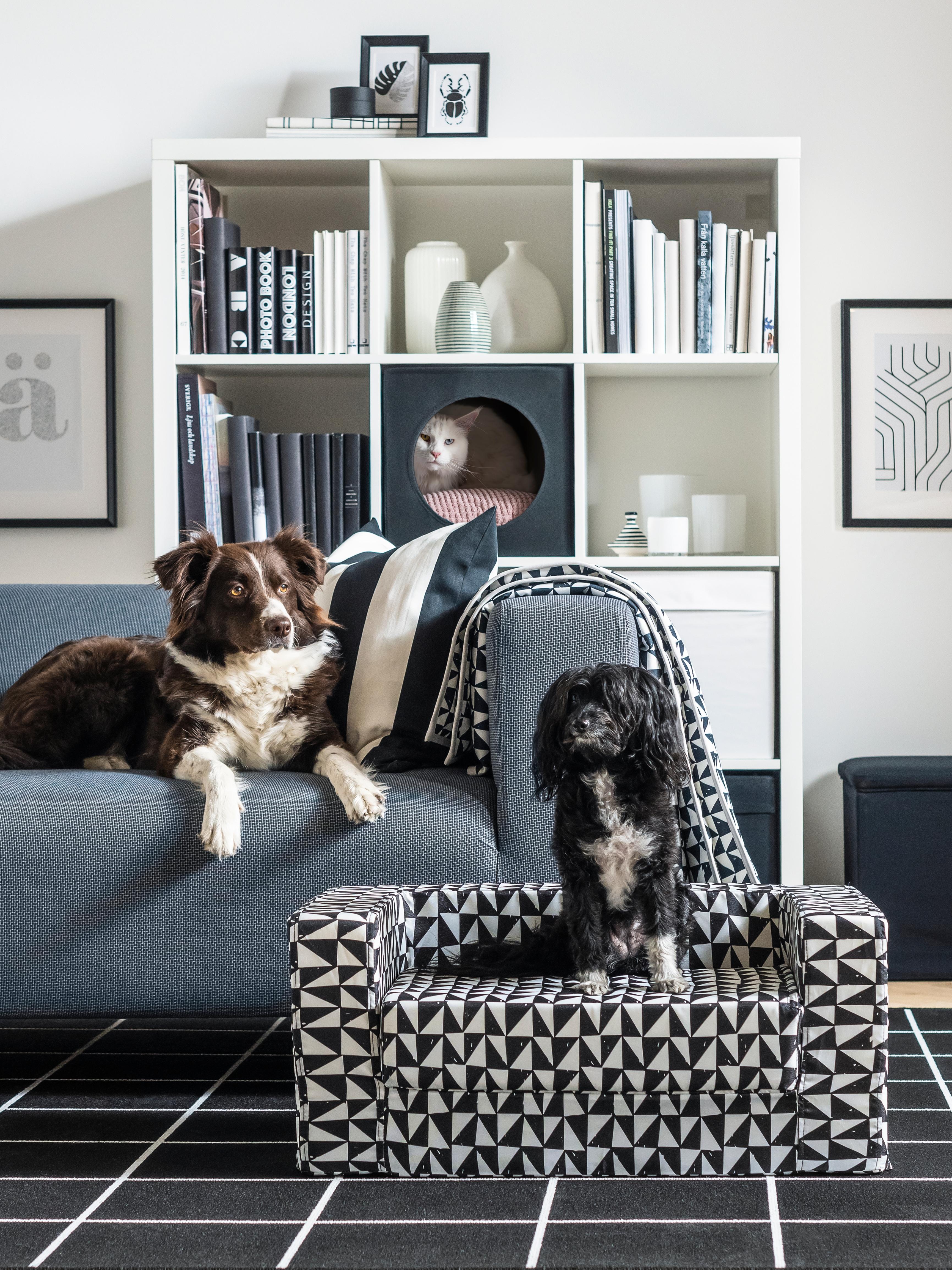 canapé-pour-petit-chien-chat-LURVIG
