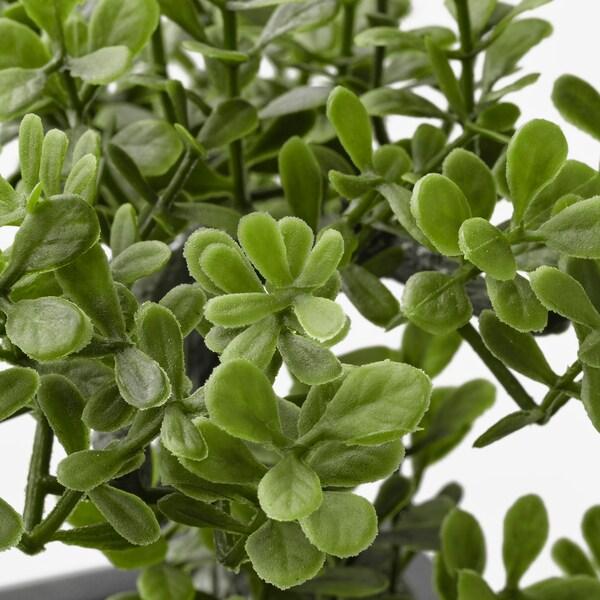 FEJKA Tekokasvi+ruukku, sisä-/ulkokäyttöön bonsai