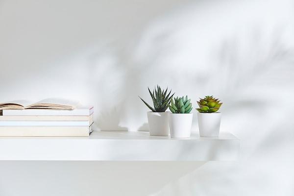 FEJKA Tekokasvi+ruukku, sisä-/ulkokäyttöön Mehikasvi, 6 cm 3 kpl