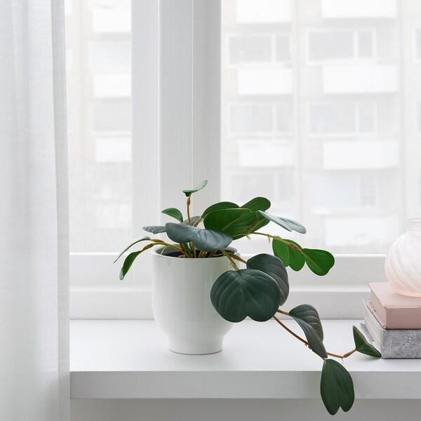 FEJKA Tekokasvi, sisä-/ulkokäyttöön riippuva/muorinkukka, 9 cm