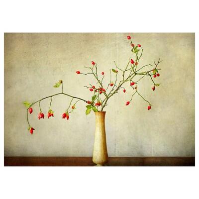 PJÄTTERYD Taulu, Ruusunmarja, 100x70 cm