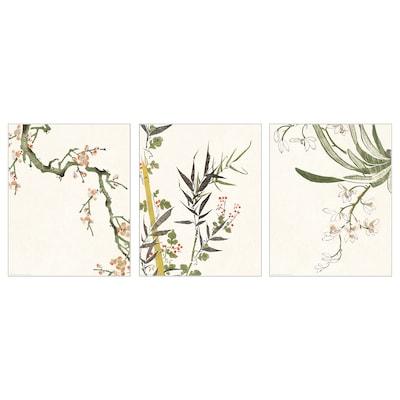 BILD Image, floraison, 40x50 cm