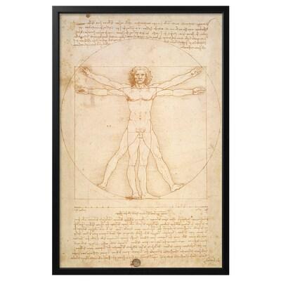 BJÖRKSTA Image avec cadre, L'Homme de Vitruve/noir, 78x118 cm