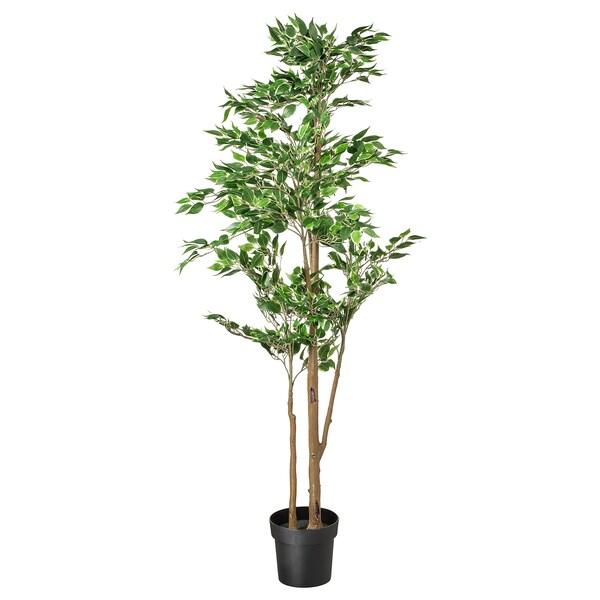 FEJKA Plante artificielle en pot, figuier pleureur, 21 cm