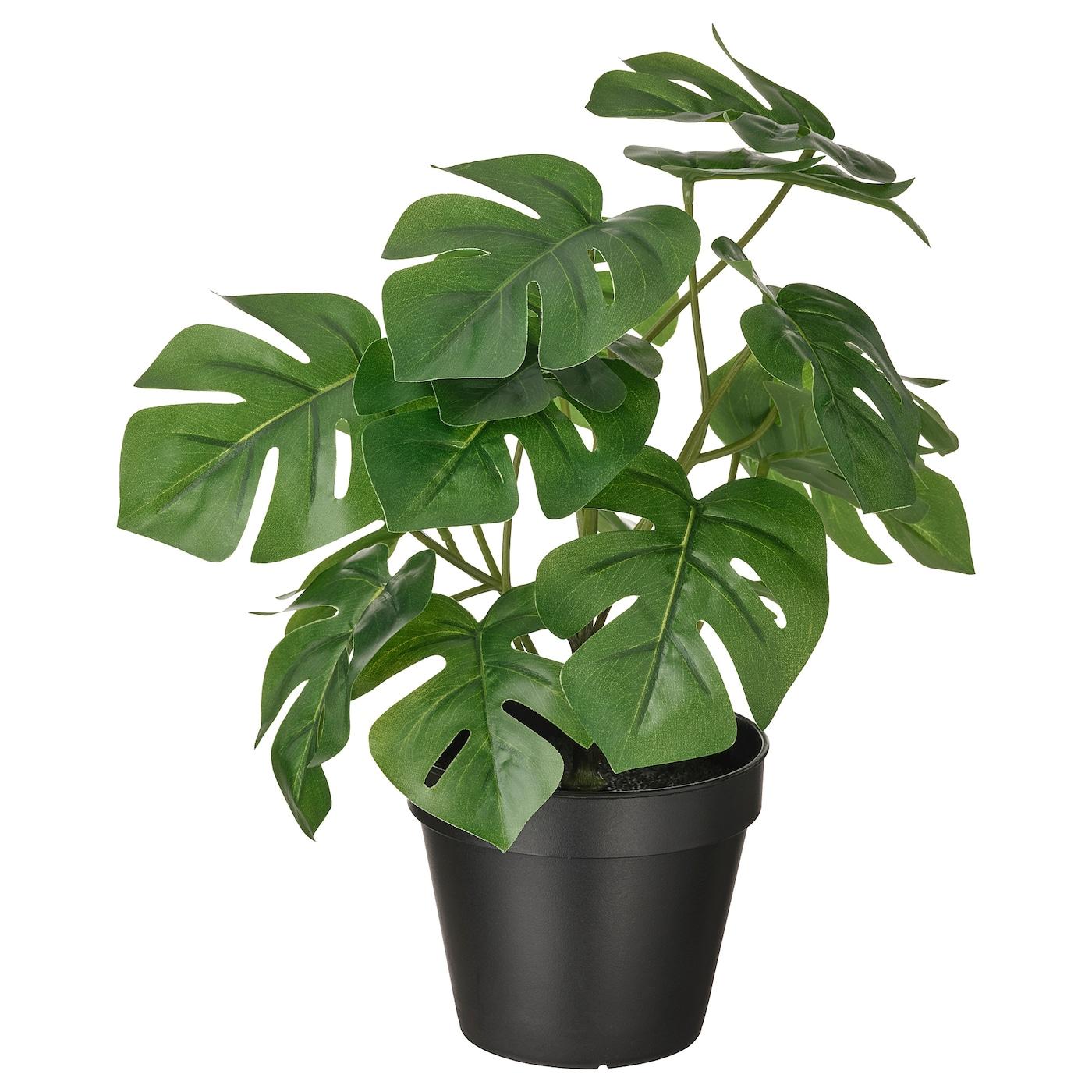 FEJKA Plante artificielle en pot, intérieur/extérieur monstera12 cm