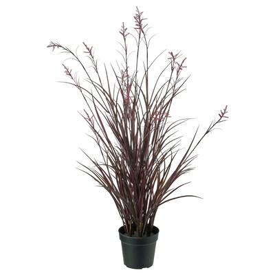 FEJKA Plante artificielle en pot, intérieur/extérieur pâturin, 15 cm