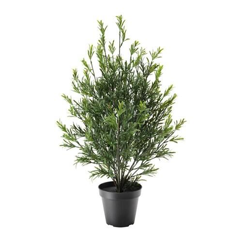 Fejka plante artificielle en pot ikea - Plante d interieur ikea ...