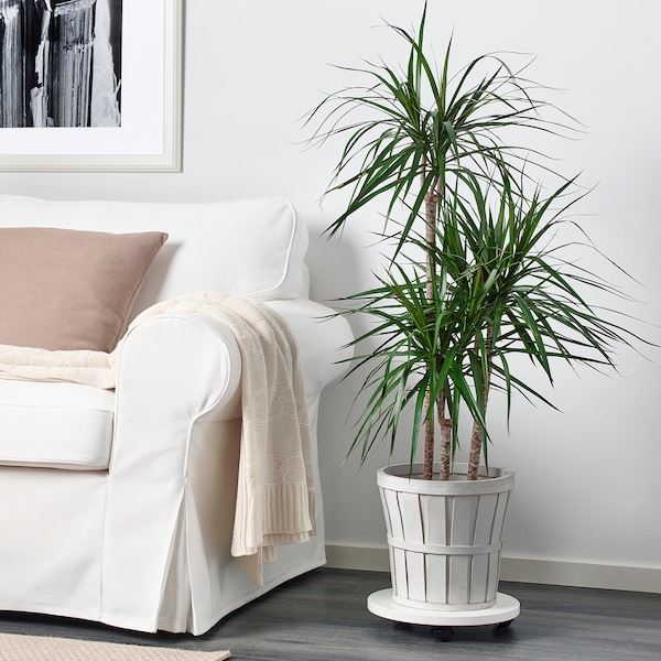 KALASA Cache-pot, blanc, 24 cm