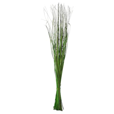SMYCKA Bouquet séché, vert, 115 cm