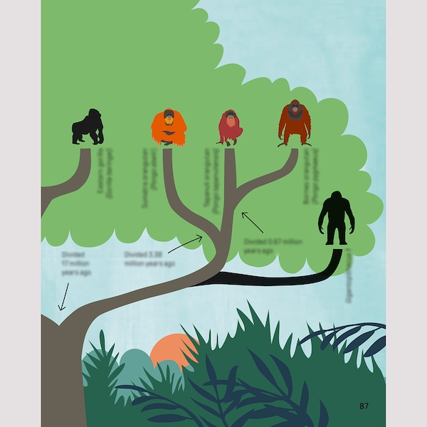 URSKOG Livre, Un Amour d'orang-outan