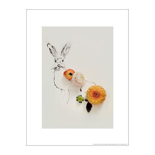 BILD Poster, floral rabbit