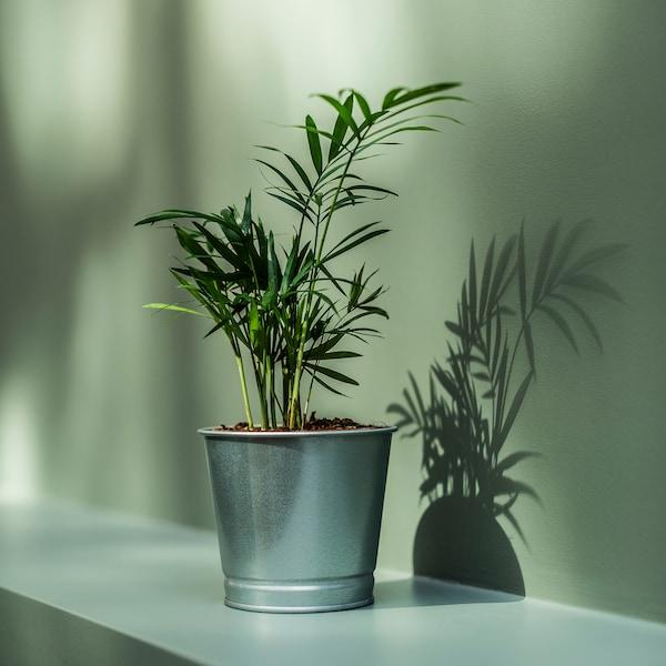BINTJE plant pot galvanised 10 cm 11 cm 9 cm 10 cm