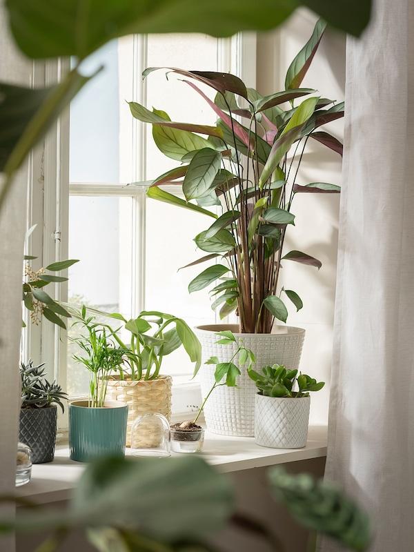 CHIAFRÖN plant pot white 22 cm 24 cm 19 cm 22 cm
