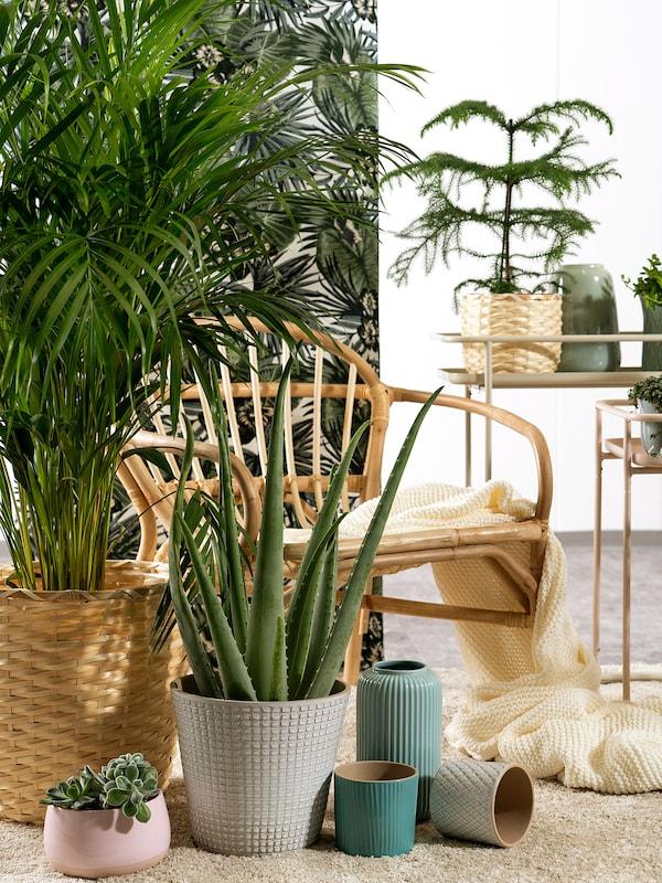 CHIAFRÖN Plant pot, white, 9 cm