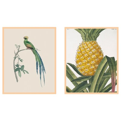 FAGERÖN frame with poster Tropical 40 cm 50 cm 2 pack