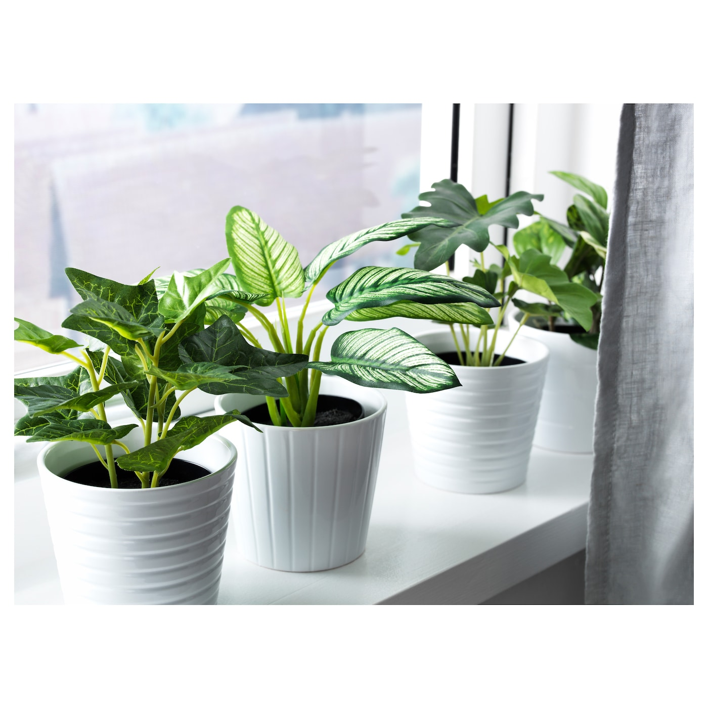 fejka artificial potted plant assorted 9 cm ikea. Black Bedroom Furniture Sets. Home Design Ideas