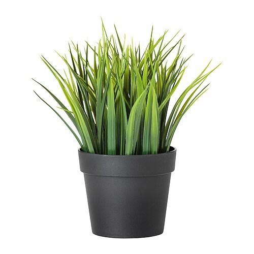 fejka artificial potted plant grass 10 5 cm   ikea