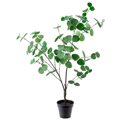 FEJKA Artificial potted plant, in/outdoor eucalyptus, 12 cm