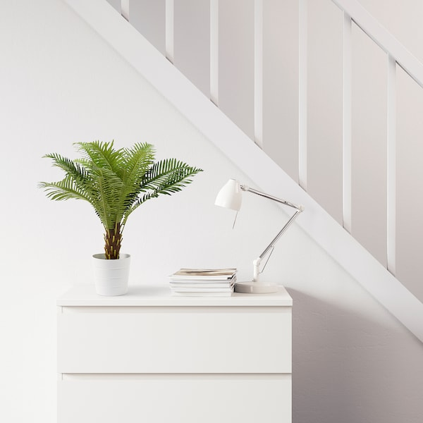 FEJKA Artificial potted plant, in/outdoor Fern palm, 17 cm