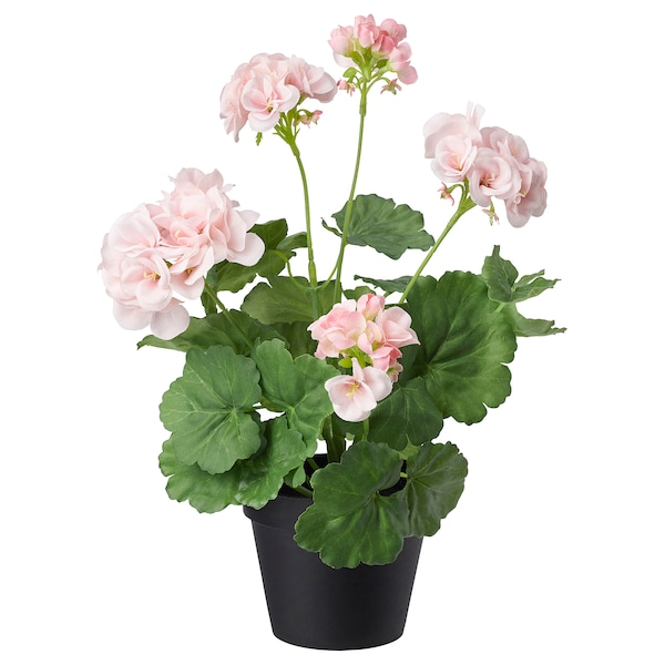 Fejka In Outdoor Geranium Pink Artificial Potted Plant Ikea