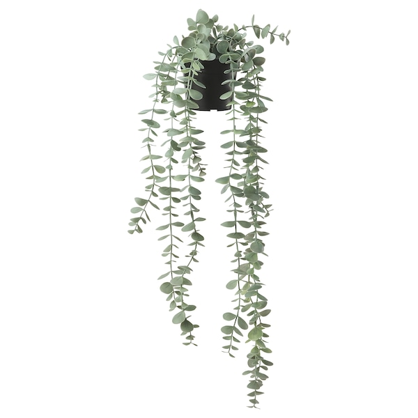 FEJKA Artificial potted plant, in/outdoor hanging/eucalyptus, 9 cm