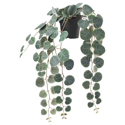FEJKA Artificial potted plant, in/outdoor hanging/String of hearts, 9 cm
