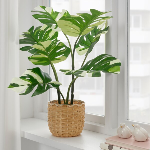 FEJKA Artificial potted plant, in/outdoor Monstera, 15 cm