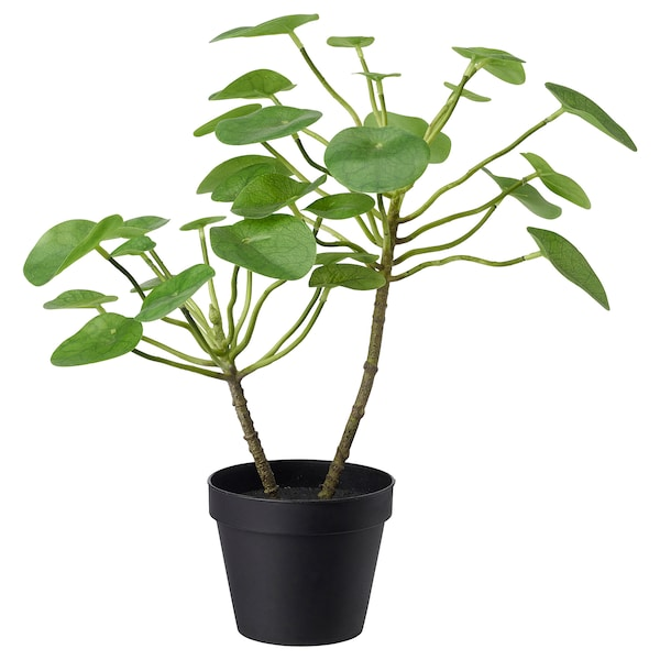 FEJKA Artificial potted plant, in/outdoor Pilea, 12 cm