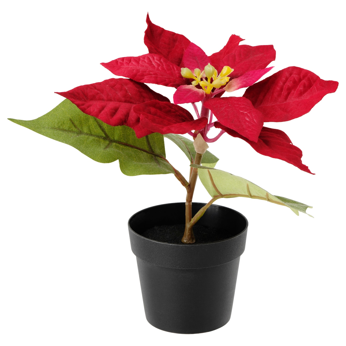 Fejka Artificial Potted Plant Poinsettia Red 9 Cm Ikea